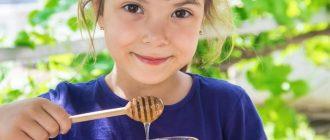 Польза меда для детей школьного возраста