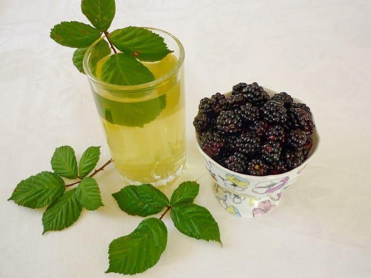 Чай из ежевичных листьев
