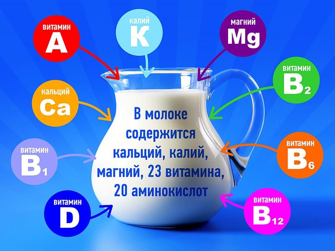 молоко для организма